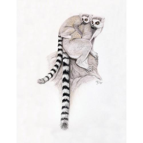 Lemur & Baby